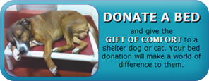 Donate a bed and give the gift of comfort to a shelter dog or cat. Your bed donation will make a world of difference to them.